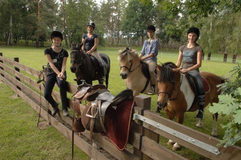 Reiten auf Ponys und Pferden