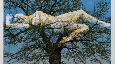 Hans-Joachim Schubert: Durchdringungen, Farbfotografie, 2007