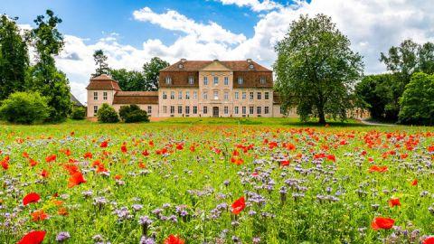 Schloss Kummerow - KunstOffen