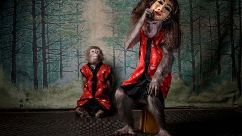 Jasper Doest - Des Affen Maske