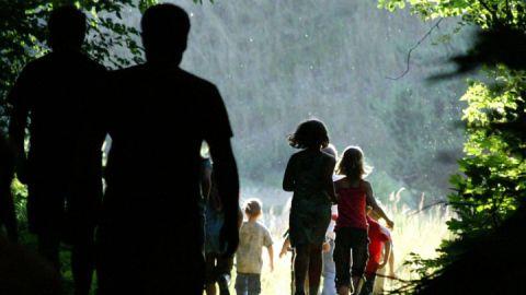 030 Bildergalerie - Programm Waldwanderung