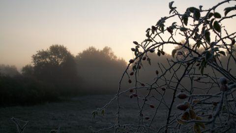 Herbststimmung im Hullerbusch