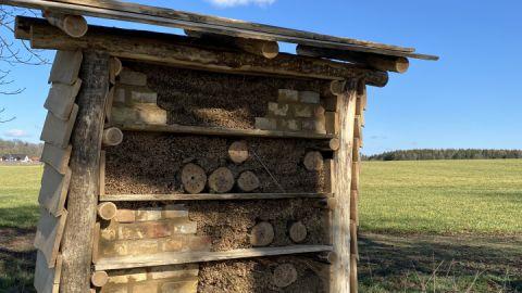 Bienenhotel im Land Fleesensee