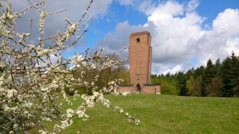Ehrenmal Teterow im Frühling