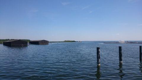 Müritzblick vom Sietower Hafen