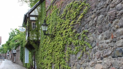 Mittelalterliche Wall- und Wehranlage Neubrandenburg