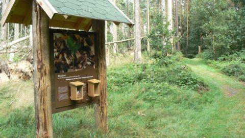 Infotafel Walderlebnispfades