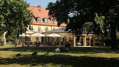 Terrasse & Gutshaus, Gutshof Sparow