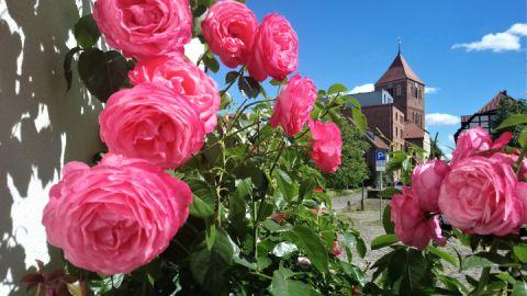 Stadtkirche vom Mühlenviertel aus