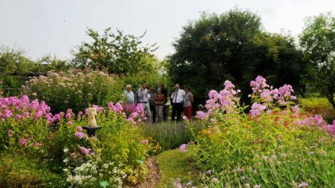 Besucher des Gartens