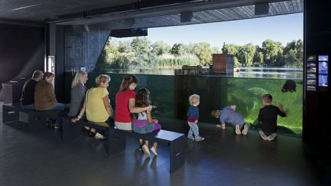 Müritzeum Wassertheater