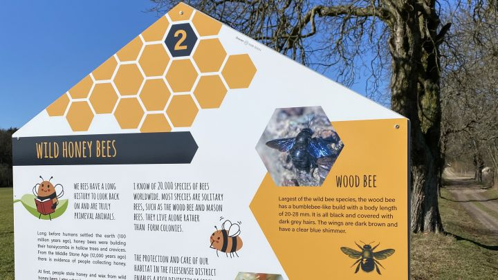 Hollis Bienenlehrpfad im Land Fleesensee