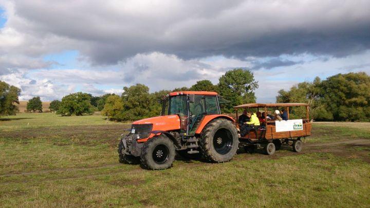 traktorkremser